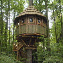 Домики и парки на деревьях