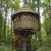 Домик на дереве «Шале». Лето