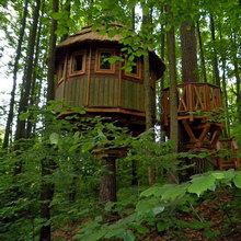Как может выглядеть домик на дереве? Как обустроить домик на дереве?
